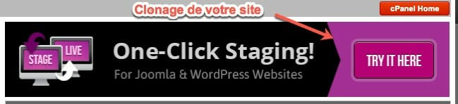 option avancé de clonage de site wordpress